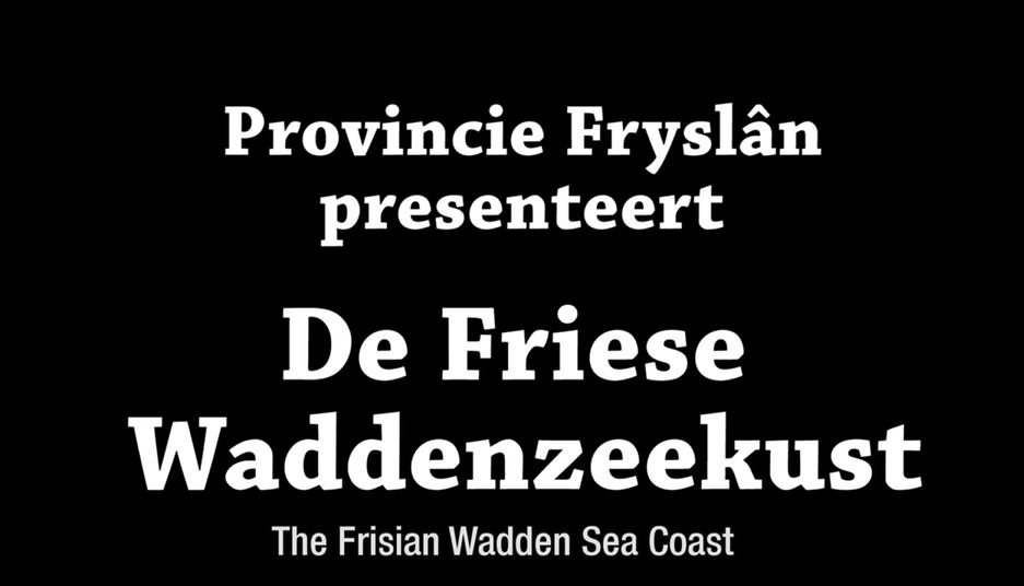 Screenshot Fryslan